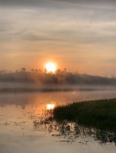 sun-fog-lake