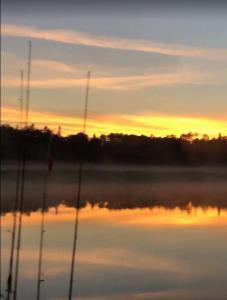 sunset-rods3